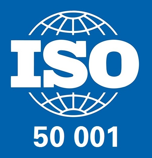 ISO 500001